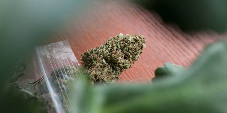 Oregon Ran a Sting Operation on Dispensaries and All Shops Passed