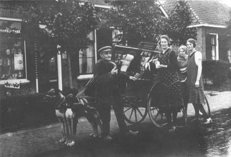 De hondenkar van winkelier Klaas Lourens uit Jelsum, foto circa 1929.