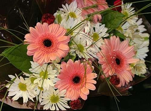 Daisy Wedding Decorations | Daisy+Wedding+Bouquet,+wedding+bouquet,+daisy+wedding+bouquet.jpg