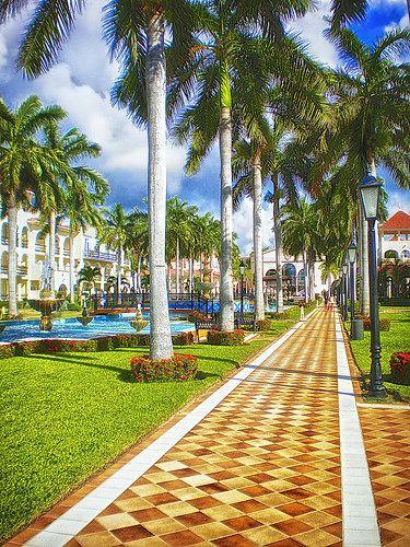 Playa del Carmen Mexico #travelnewhorizons