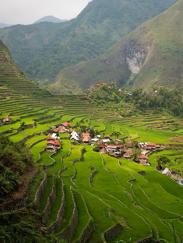 25 Best Banaue Ideas On Pinterest Banaue Rice Terraces Philippines And About Philippines