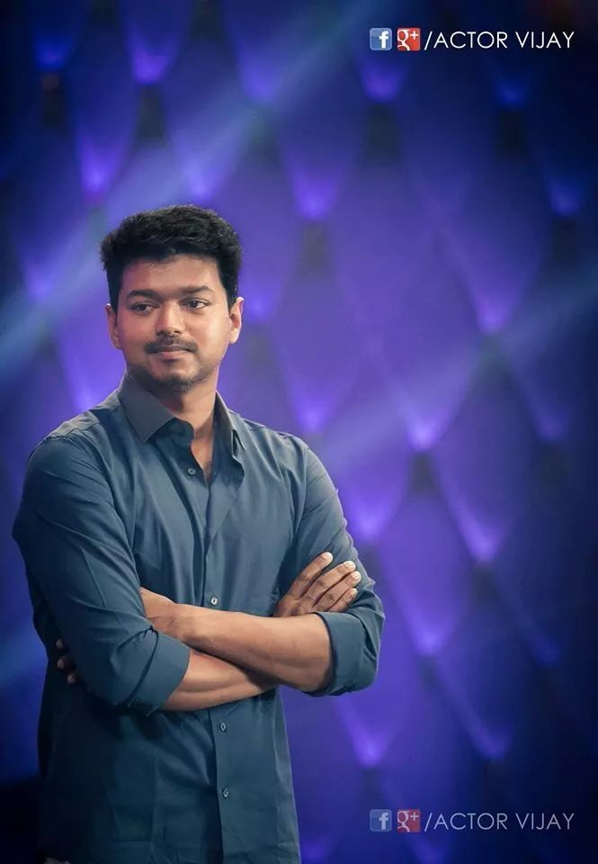 1000 images about vijay on pinterest hot actors family