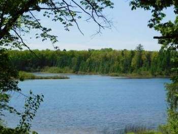15 best smallwood lake in gladwin images on pinterest for Best shore fishing in michigan