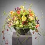 Valentin 2016 - Frühlingshafte Inspiration von Mehmet Yilmaz, Fünfter Platz World Cup der Floristen 2015