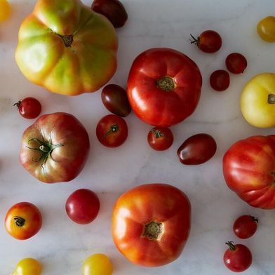 19 Tomato Salads You've Been Waiting For Since January more at my site You-be-fit.com