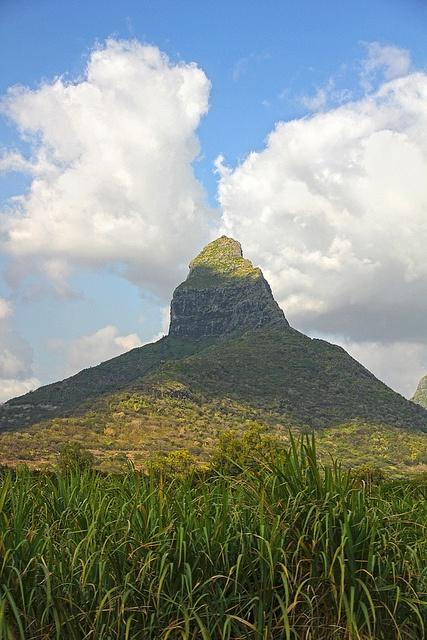 Montagne Tamarin