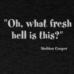 Sheldon Quote - Big Bang Theory
