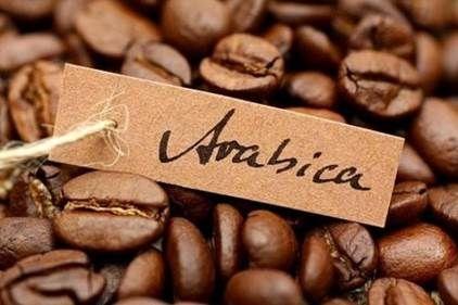 """Результат пошуку зображень за запитом """"картины натему кофе эфиопия"""""""