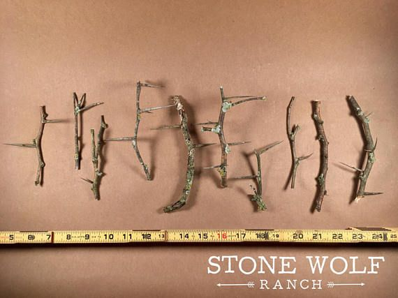 10 Lichen honey locust branches ~wildcrafting, lichen, art, crafting, fairy gardens, woodworking, rustic, natural, home and wedding dècor by StoneWolfRanch on Etsy https://www.etsy.com/listing/577417639/10-lichen-honey-locust-branches
