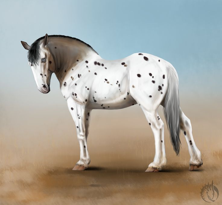Speckle, draft horse
