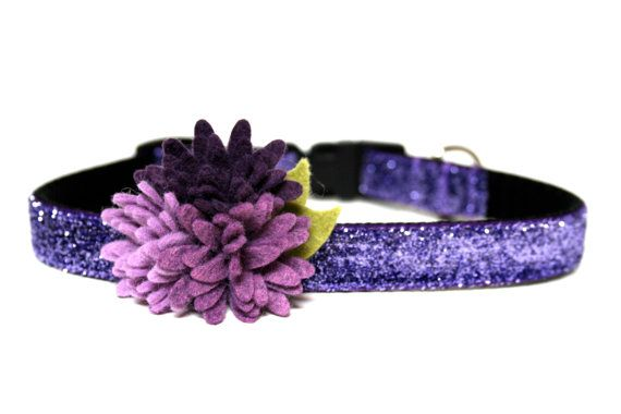 Purple Dog Collar 5/8 Flower Dog Collar by Wagologie on Etsy, $20.00