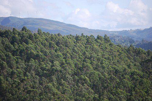 Klabin tem receita líquida de R$1,6 bilhão no 2T16 - http://po.st/crM3mp  #Empresas - #Celulose, #Klabin, #Resultado