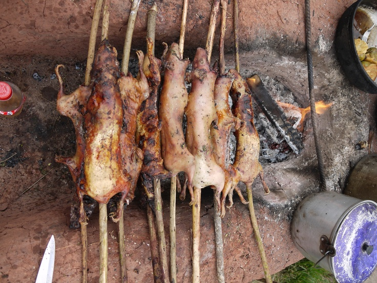 Guinea Pig, typical dish in Cusco Sacred Valley of the