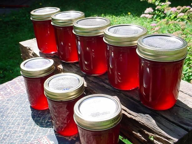 Here is the recipe I used to make yummy fireweed jelly with fireweed blossoms picked right from my yard here in Alaska :)