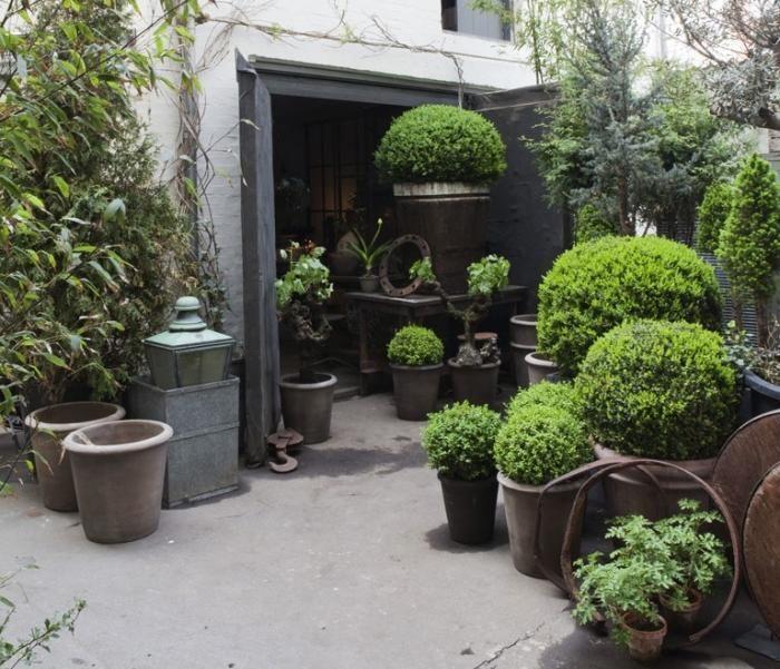Topiary Garden Design Ideas Part - 46: Copenhagen