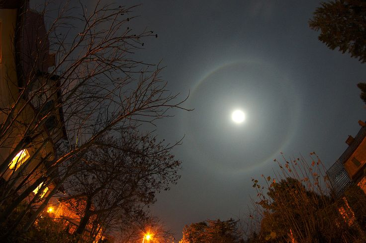 While stargazing, have you ever noticed a large circular band of light surrounding the moon?  A lunar halo is caused by the refraction, reflection, and dispersion of light through ice particles suspended within thin, wispy, high altitude cirrus or cirrostratus clouds. As light passes through these hexagon-shaped ice crystals, it is bent at a 22 degree angle, creating a halo 22 degrees in radius (or 44 degrees in diameter). A double halo, sometimes with spokes,