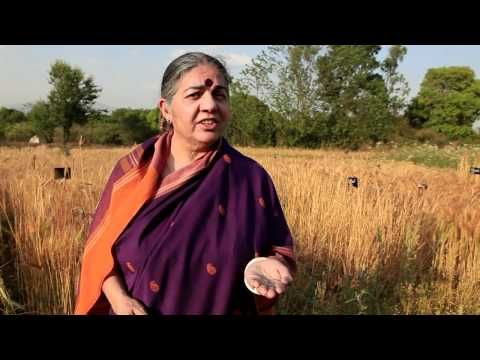 Seed Freedom - seed is the source of life and the first link in the food chain. The amazing Dr. Vandana Shiva.