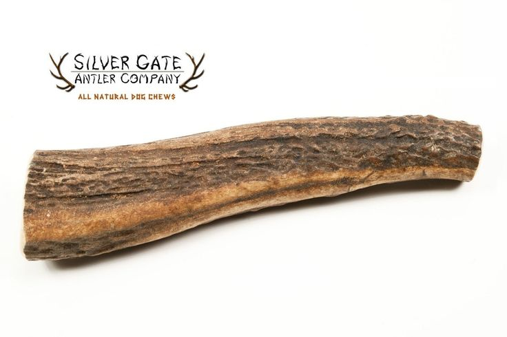 Silver Gate Antlers Elk Antler Dog Chews - X LARGE 6-7', All Natural Premium Antler Dog Chew | Free Shipping - Made in USA! Holistic and Hypoallergenic Treat Toy - Perfect for Large and Extra Large Dogs * Details can be found by clicking on the image.