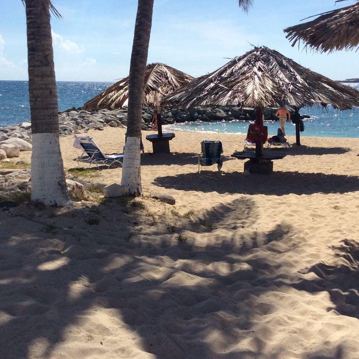 Flamingo Beach Resort 296 best Beaches in
