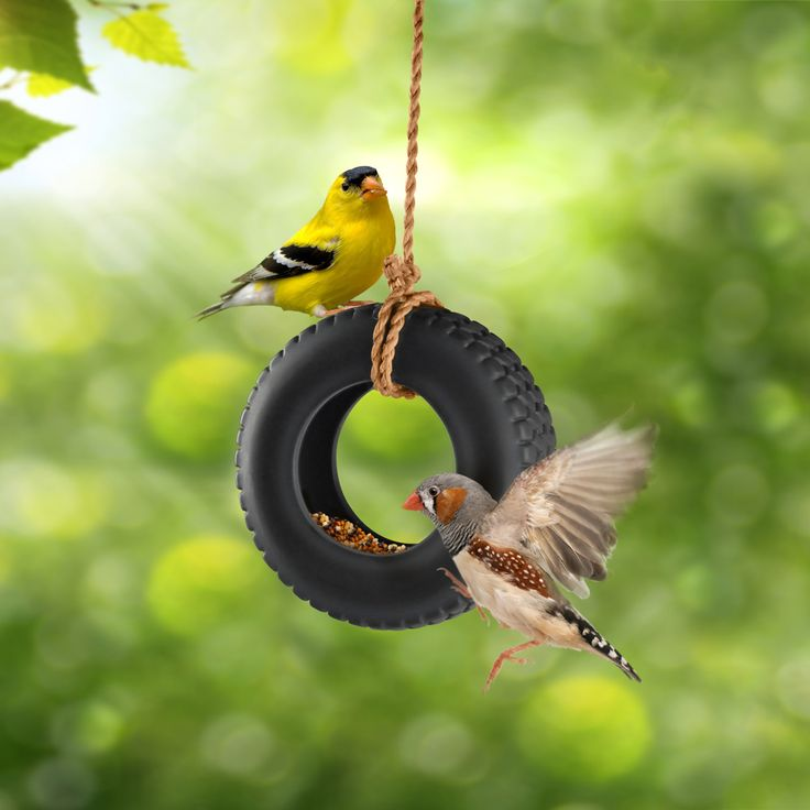 Tire Swing Bird FeederSwings Birds, Ceramics Tires, Tires Swings, Bird Feeders, Gardens, Birds House, Tires Birds Feeders, Minis Tires, Tire Swings