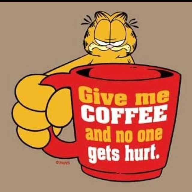 82 Best Garfield Quotes Images On Pinterest Garfield