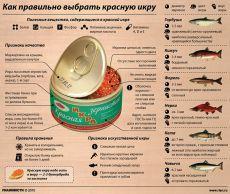 Как правильно выбрать красную икру   РИА Новости - события в России и мире: темы дня, фото, видео, инфографика, радио