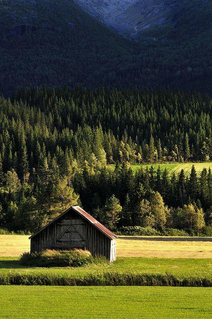 homeintheforest: Barn by strømstad on Flickr.