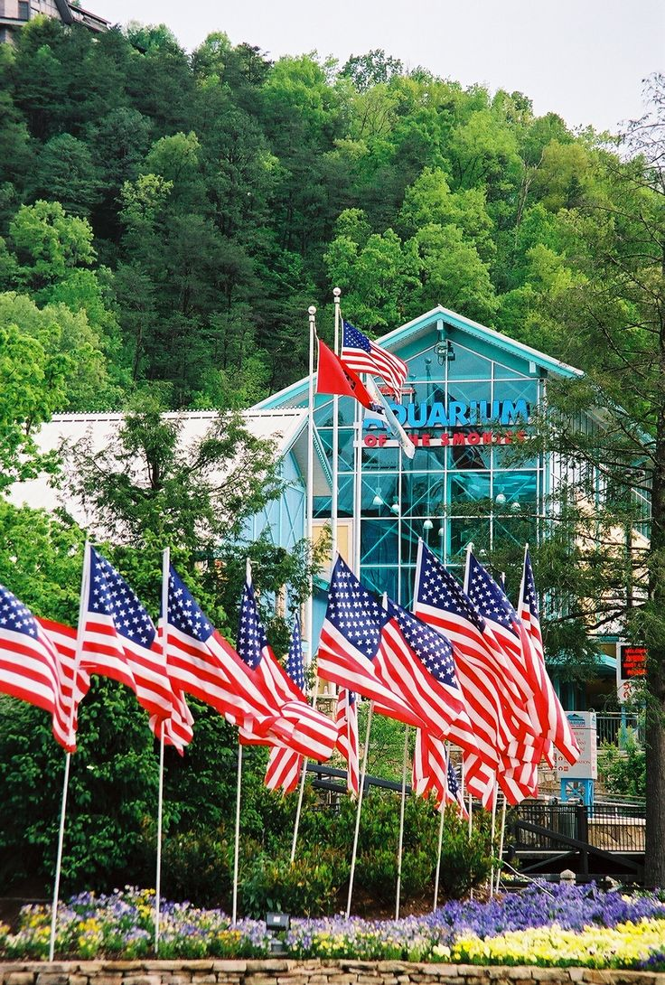17 best images about things to visit in gatlinburg on for Mountain flower cabin pigeon forge