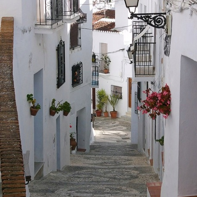Andalucía...spain: One Day, Sunday Brunch, Flowers Fields, Favorite Places, Greece, Andalucia Spain, Visit, Wanderlust, Ancient Street
