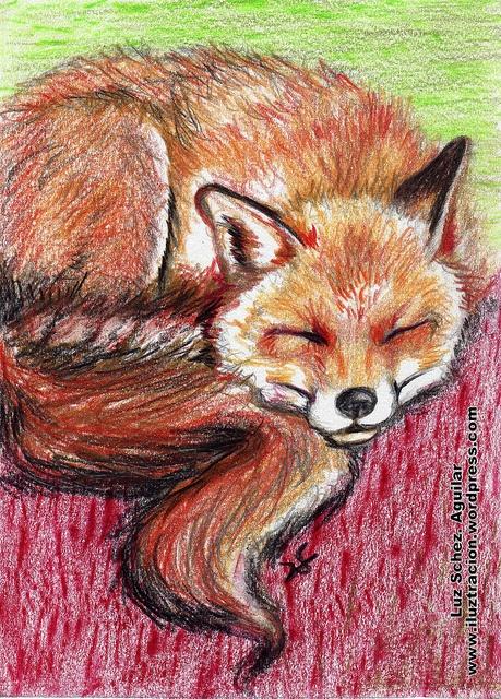 Fox by Luz Sánchez Aguilar  Arte | iLUZtración