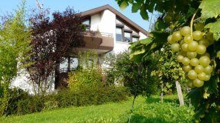 Appartmenthotel-Weingarten in Müllheim - Tagung und Urlaub, alles ist möglich!