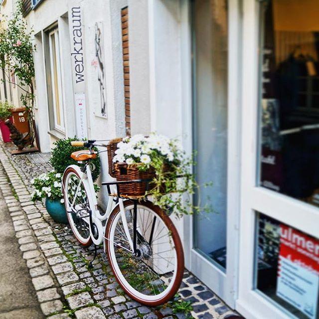 Schönen Tag Ulm!  #ulm #rebengasse #altstadt #oldtown #schoenentag #bonjour #bonjeudi #bonnejournée #ulm125 #street #streetgram #travel #instatravel #tbt #passionpassport #herbst #fall #autumn #herbstinulm #bikeporn #bike #igersulm_official #visitulm #architecture