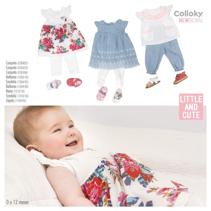 New Born/ Baby Colloky