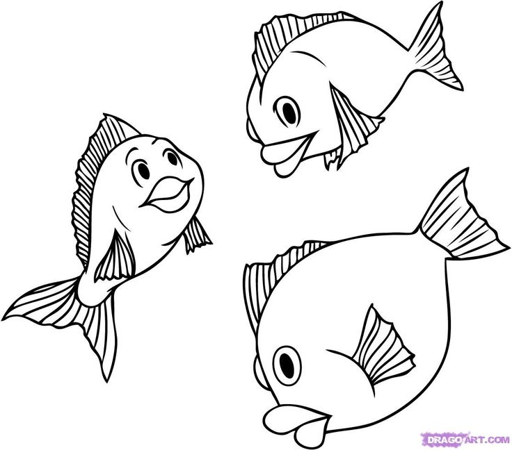 25 best ideas about how to draw fish on pinterest fish for Cartoon fish drawing