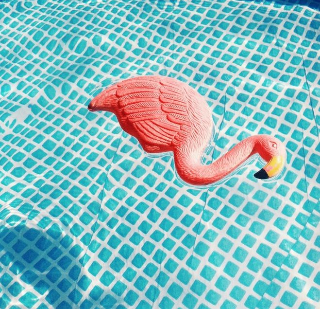 Envie de Fraise ♡ #Summer #Maternity #Swimmingpool