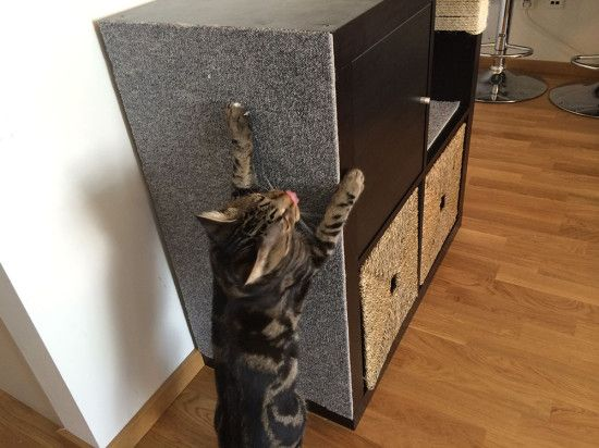 209 best images about ikea hacks inne on pinterest cat for How to take apart ikea furniture