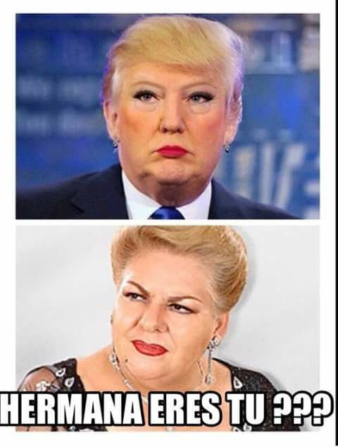 Jajaja, Paquita y Donald Trump. Como 2 gototas de agua puerca :D