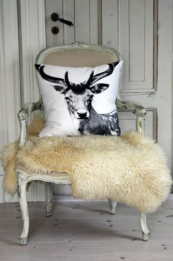 Antler pillow and fur - I want the pillow!