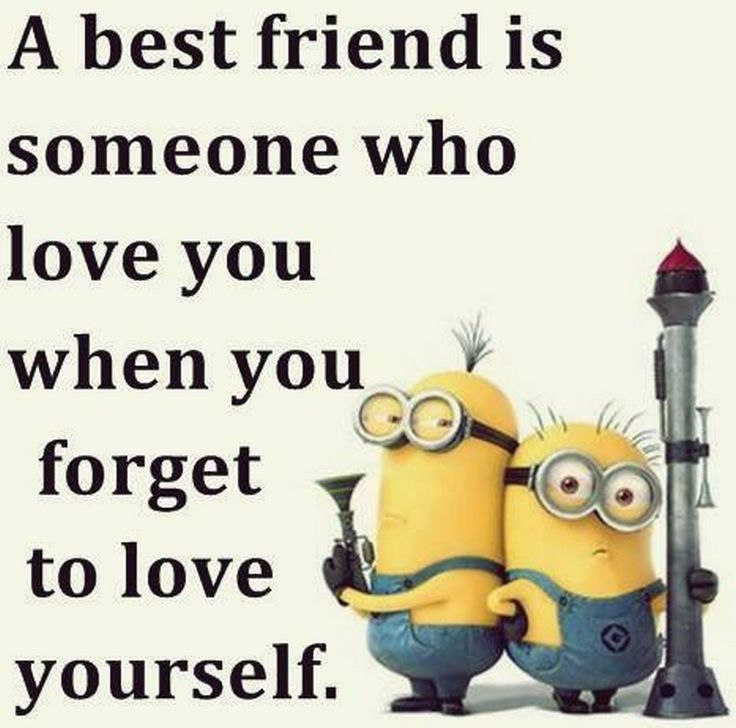 27 Best Minion Puns Images On Pinterest: 11885 Best Funny Friendship Quotes Images On Pinterest