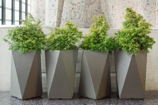 faceted #planters