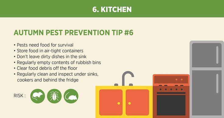 DIY pest control tips.  #pestcontrol #pest #pestreject #pestrepellent #rodents #diypestcontrol #diy #autumn #bathroom #homecleaning #housecleaning #sanitation #healthyenvironment #cleaningday #amazon #ebay #ebaydeals #ebayfinds #amazondeals #roach #mosquitos #ants #fleas #ticks #bugs #bugspray #roaches #lortek