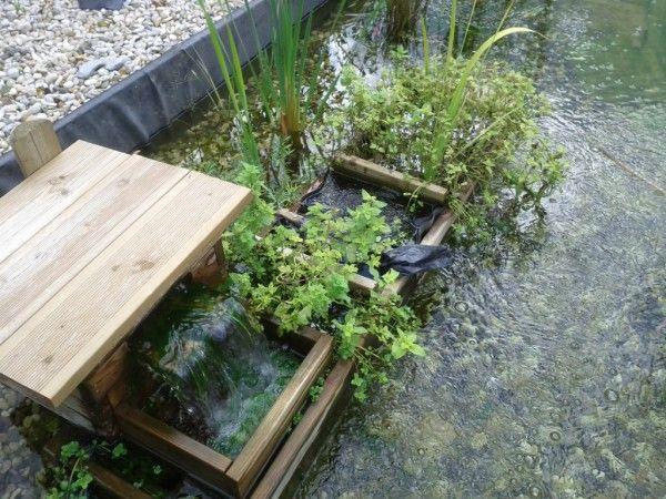 17 meilleures images propos de piscines naturelles sur for Autoconstruction piscine naturelle