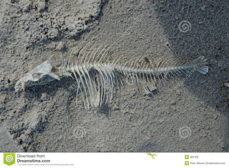 fishbone - Buscar con Google