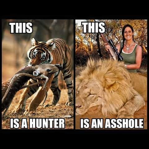Killing animals is not a sport! If we're going to sacrifice animals for own needs can we at least be honourable about it and not wasteful for such a stupid reason like bragging rights. Ffs this world. I see no point in even going near an animal in it's own habitat, nevermind killing it for FUN!