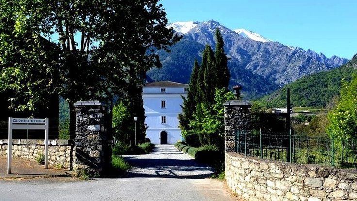 Corte, Osteria di l'Orta casa Guelffuci, 5 chambres d'hôtes, 107 à 137 euros petit-déjeuner inc. sis sur vignoble