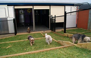 Imparra Pet Motel - Dog Kennels, Resort Rooms, Luxury Cat Suites, Boarding Kennel. Brisbane, Ipswich, Gold Coast, Sunshine Coast
