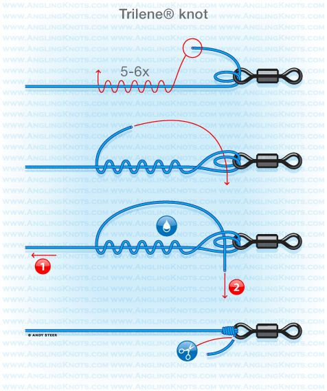 Predator fishing knots : Trilene knot