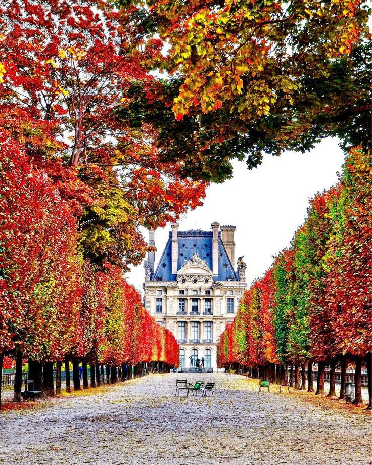 Autumn in Paris - photo by @marcellopez_ su Instagram