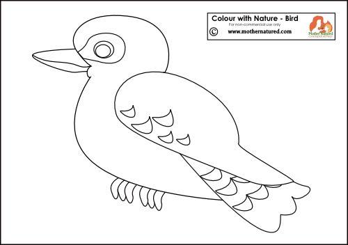 Kookaburra Printable