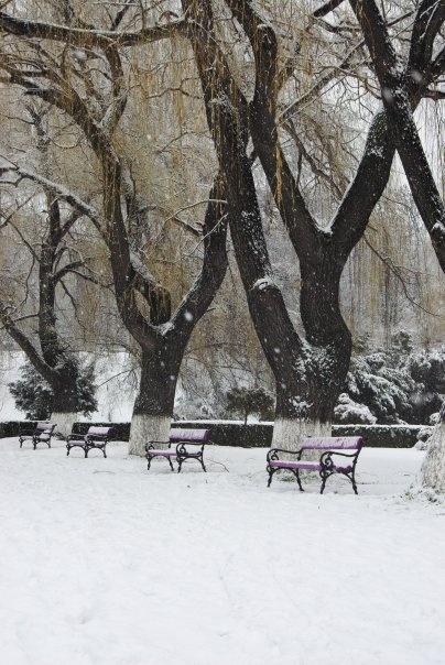 The beautiful park in my hometown.  Onești, Romania